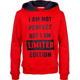 Mädchen Sweatshirt mit Kapuze und Glitzerprint