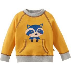 Kleinkind Sweatshirt mit Raglan-Ärmeln