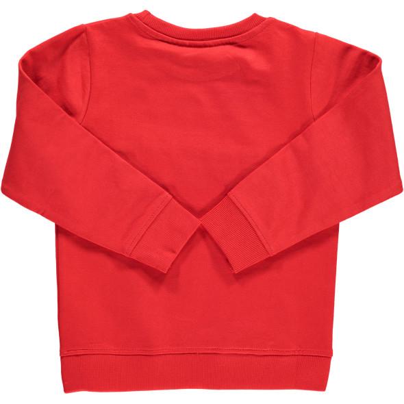 Mädchen Sweatshirt mit Flock-Print