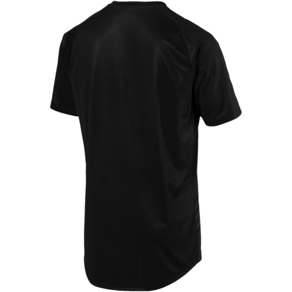 Herren Sportshirt in Slim Fit