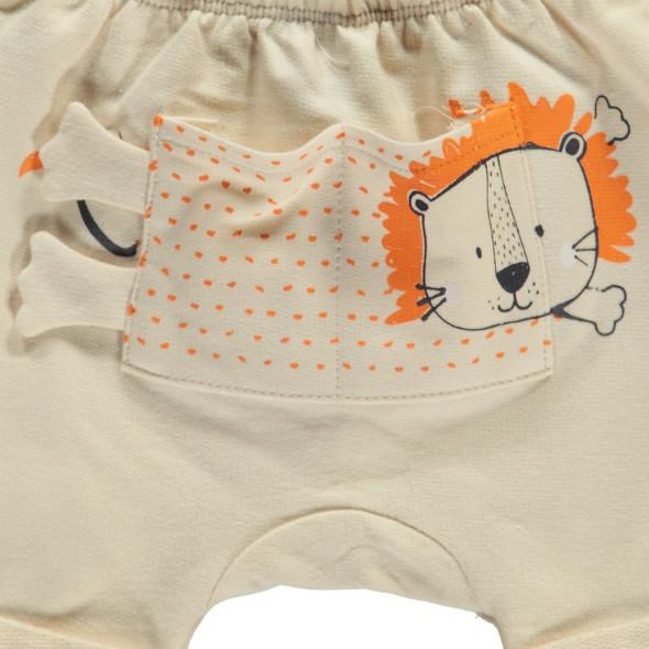 Baby Shorts mit Löwenmotiv