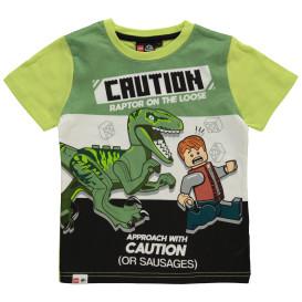 Jungen Shirt mit Frontprint Dino