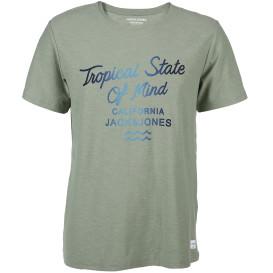 Jack&Jones JORDEEPSURF TEE SS CR T-Shirt