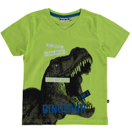 Jungen T-Shirt mit Dinomotiv