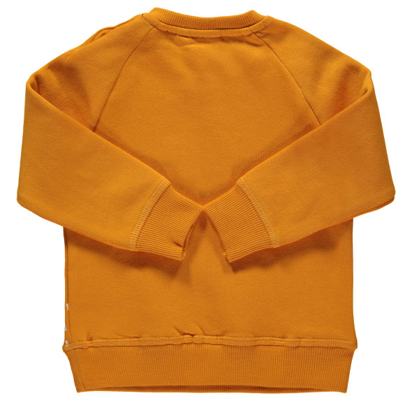 Jungen Sweatshirt mit Stickerei-Applikation und angesetzten Öhrchen