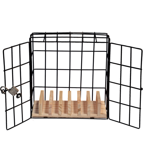 Handy Gefängnis