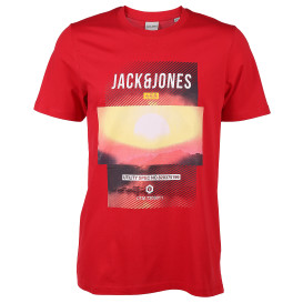 Jack&Jones  JCOFRIDAY-DISC TEE SS Shirt