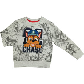 Jungen Sweatshirt mit Alloverprint