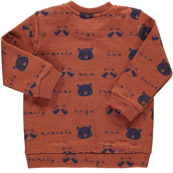 Baby Jungen Sweater mit Print