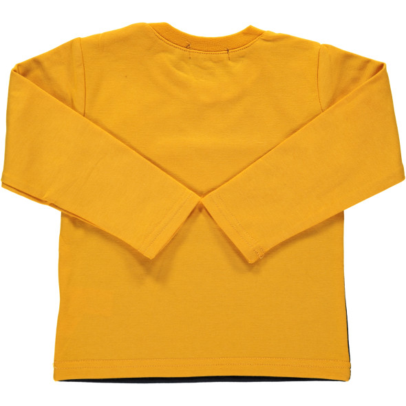 Baby Jungen Langarmshirt mit Frontprint