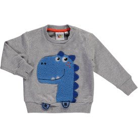 Baby Sweatshirt mit Dino Applikation