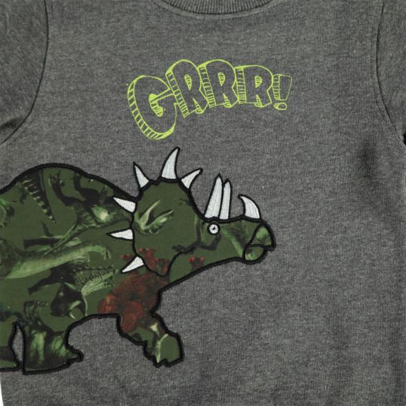 Jungen Sweatshirt mit Dinoapplikation
