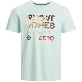 Jack&Jones JJSPRING FEELING TEE Shirt