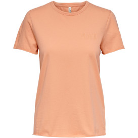 Only ONLFRUITY LIFE REG S/ Shirt