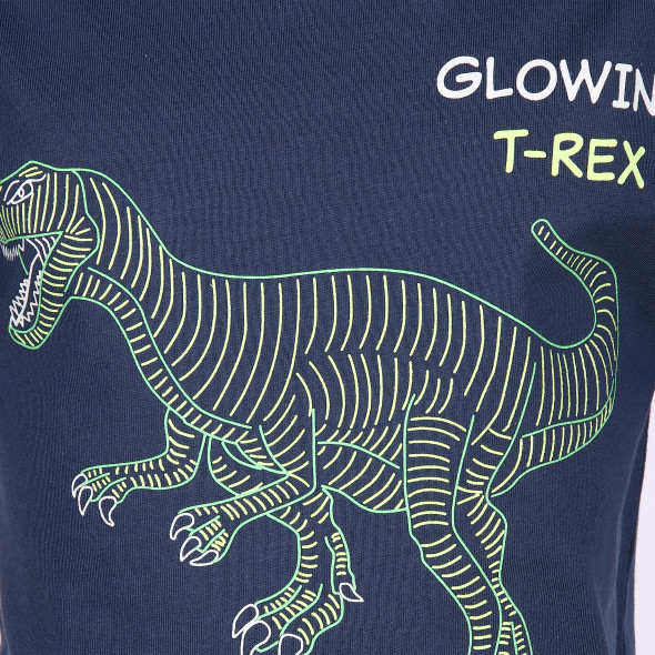 Jungen Shirt mit Dino Print