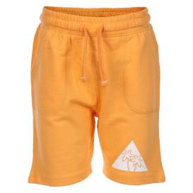 Jungen Shorts mit Print