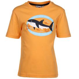 Jungen T-Shirt mit Haiprint